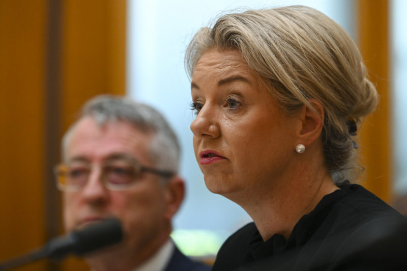 nationals leadership bridget mckenzie