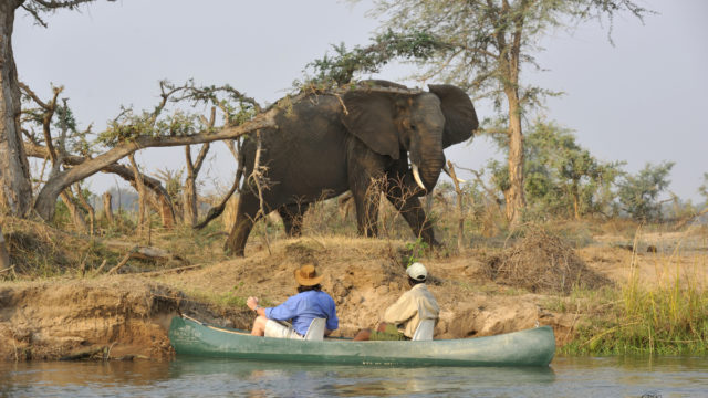 Seven tips to help you make the most of your first African safari