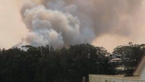 port macquarie fire