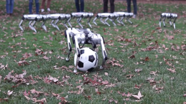 Cute 'Cheetah' robots leap into the soccer action