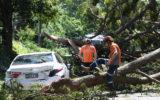 sydney storm electricity