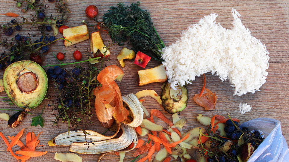 Food waste in the shape of Australia.