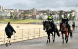 nsw police horse threat
