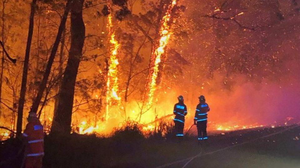 bushfires albanese turnbull