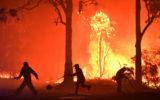 bushfires nsw mega