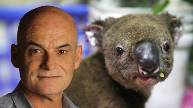 Why Garry Linnell will not be paying a cent to help the koalas caught in bushfires