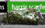 Harris Scarfe has collapsed in the lead up to Christmas.
