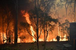 gospers mountain backburning fire