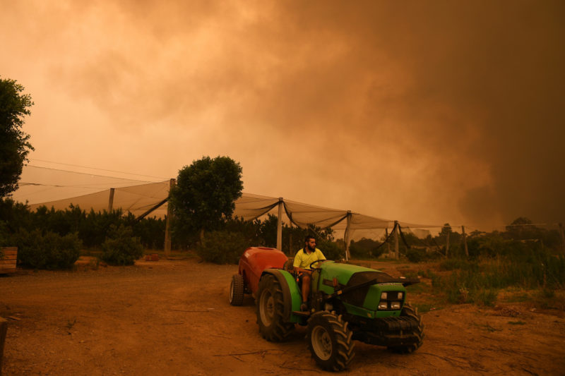 nsw-bushfires