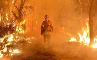 bushfires research centre