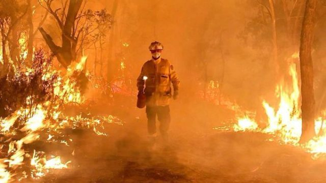 Bushfires royal commission to target climate fallout, hazard reduction