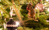 Australian kids are in for a treat with record numbers making Santa's nice list.
