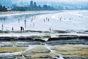 australias best beaches lorne