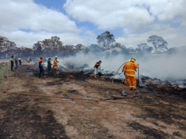 adelaide hills bushfire scammers