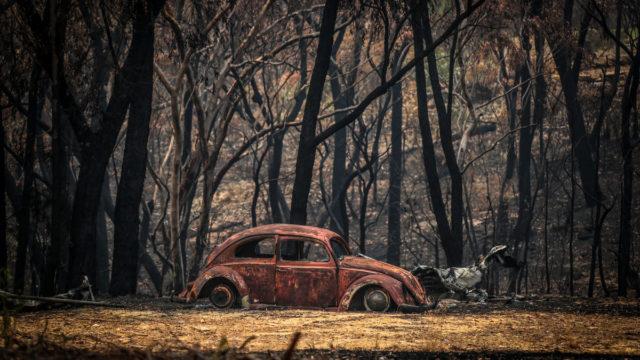 News Corp employee lashes Murdoch reporting of bushfires