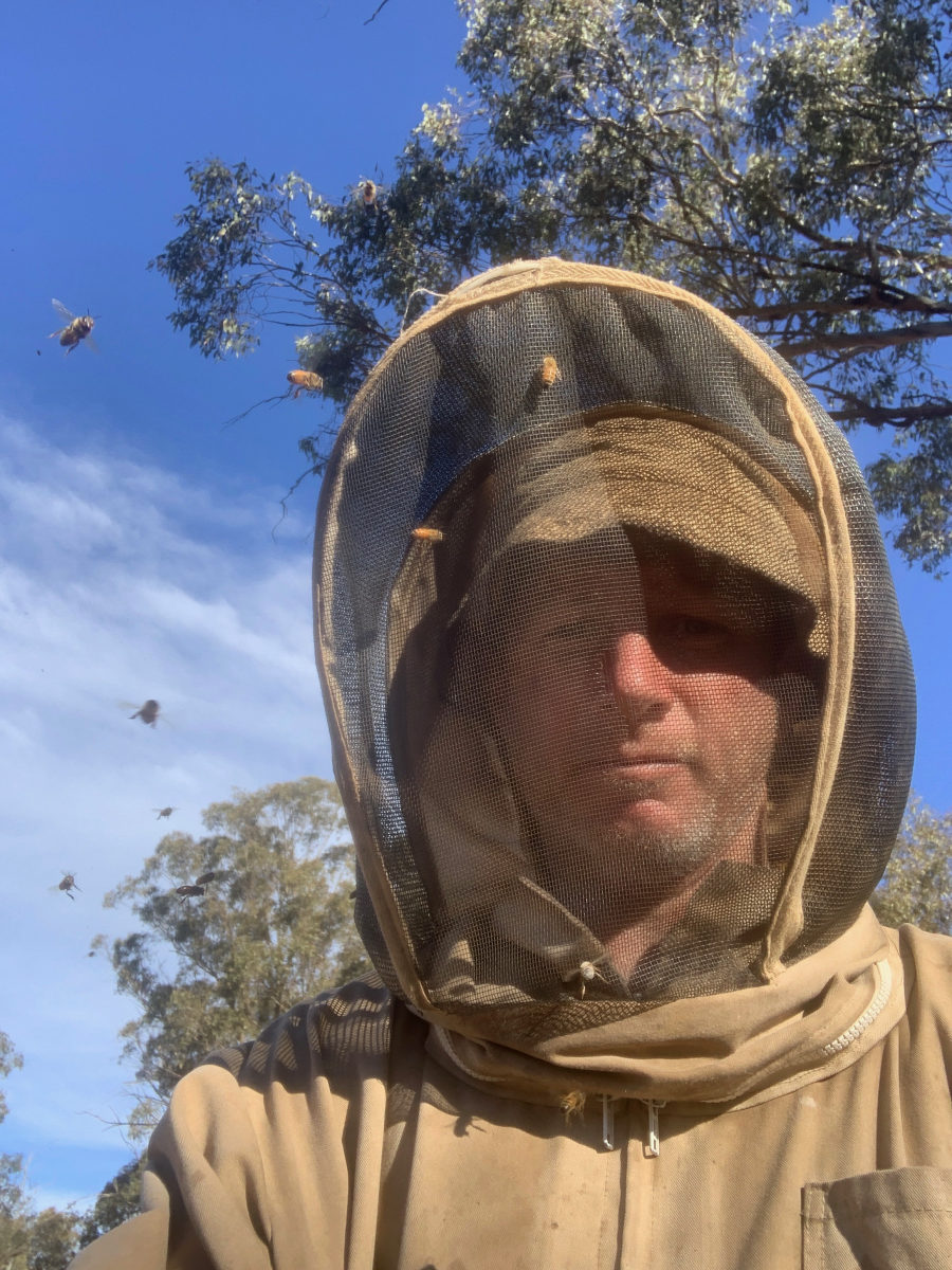 Family bypasses bushfire roadblocks to save thousands of beehives as wildlife death toll rises_4