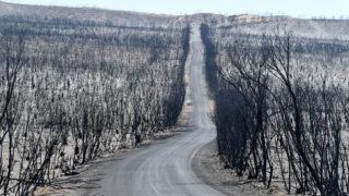 Australia bushfire