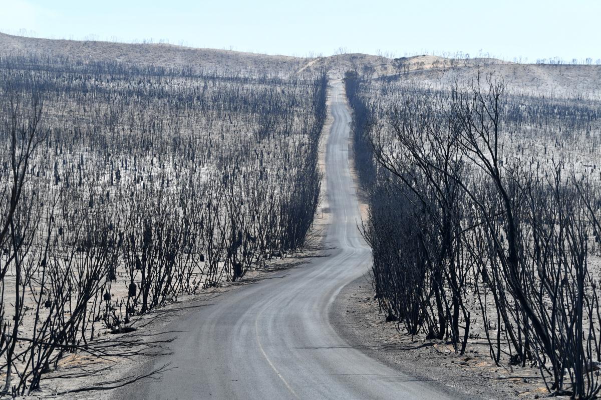 Fire boss rejects Barnaby Joyce bushfire claims as blazes continue_1