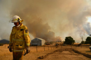 bushfire royal commission morrison