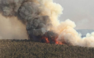 A ushfire front in the Blue Mountains.