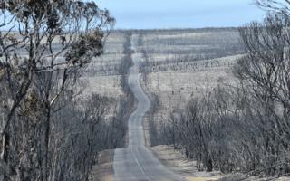 kangaroo-island-australia-bushfires