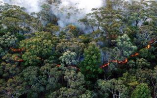 scott morrison hazard reduction emissions