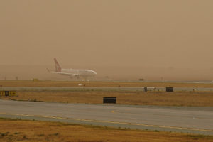 canberra airport fire beekeepers