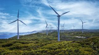 Wind turbines on a wind farm, Albany, Western Australia, Australia - stock photo