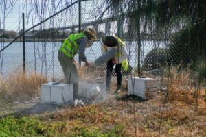 canberra airport beekeepers fire