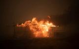 A bushfire ravages property near Canberra.