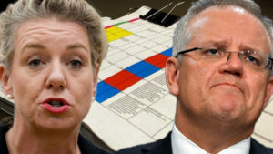 sports rorts emails