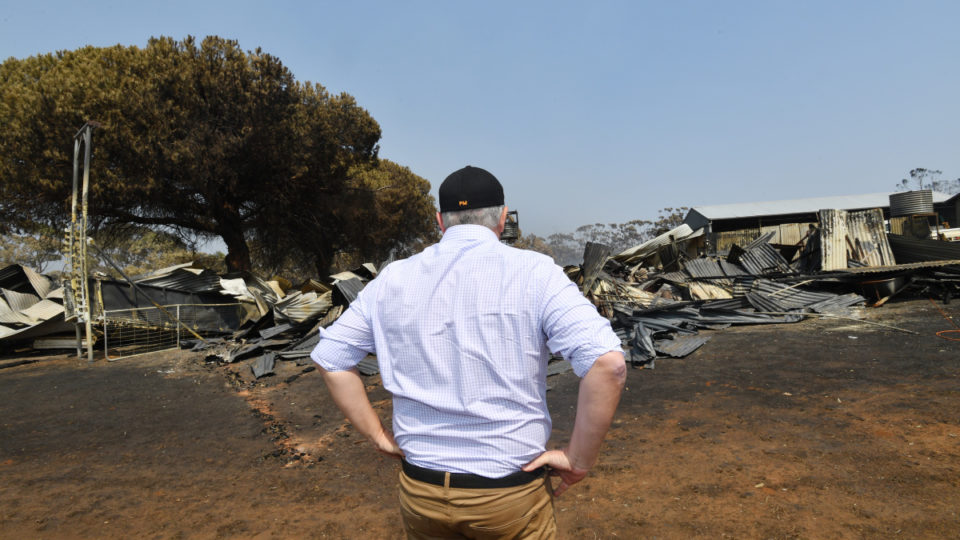 coalition survey bushfires