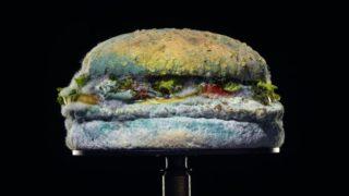 burger-king-mould
