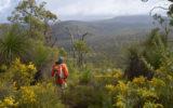 walking trails australia