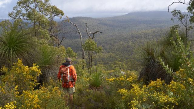 The best Australian walks you've never heard of