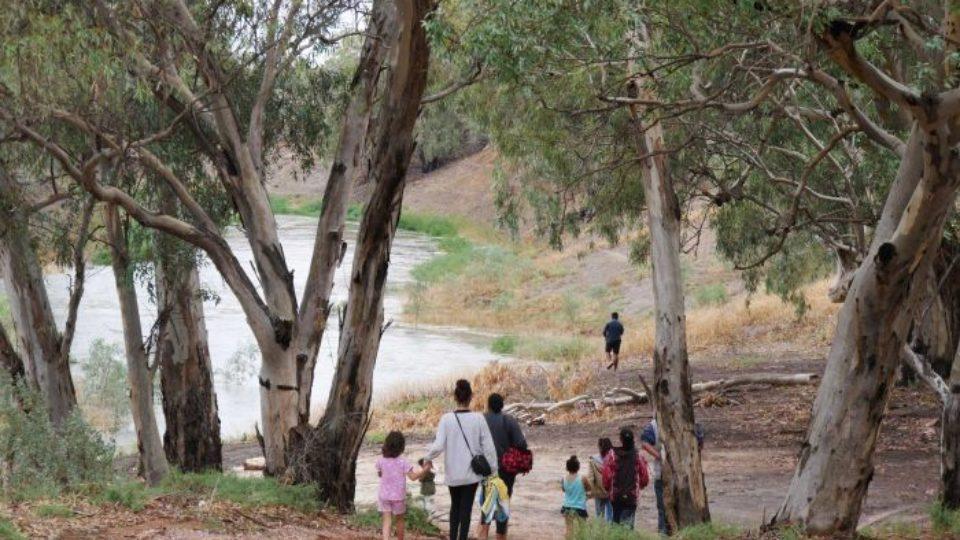 darling river flowing 2020