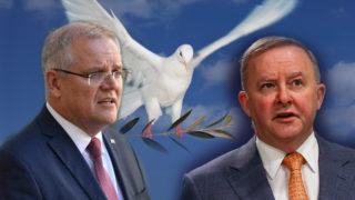 Morrison Albanese War cabinet