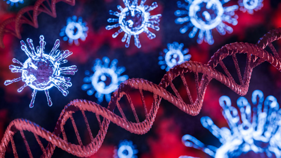Stock image of the coronavirus and DNA strands.