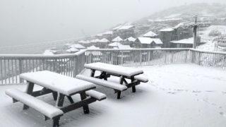 snow victoria april
