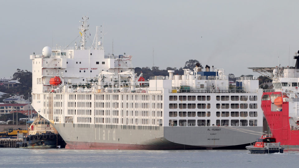 export ship virus perth