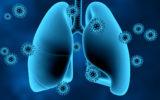 Coronavirus on lungs