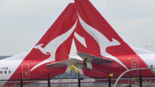 qantas cleaner stand down