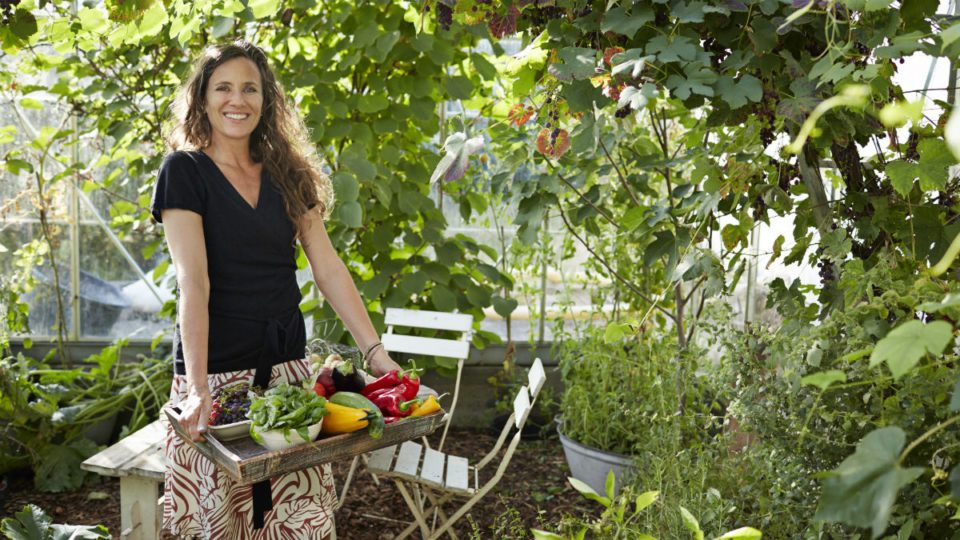 Vegetable Gardens At Home Can Save You This Much If Done Right