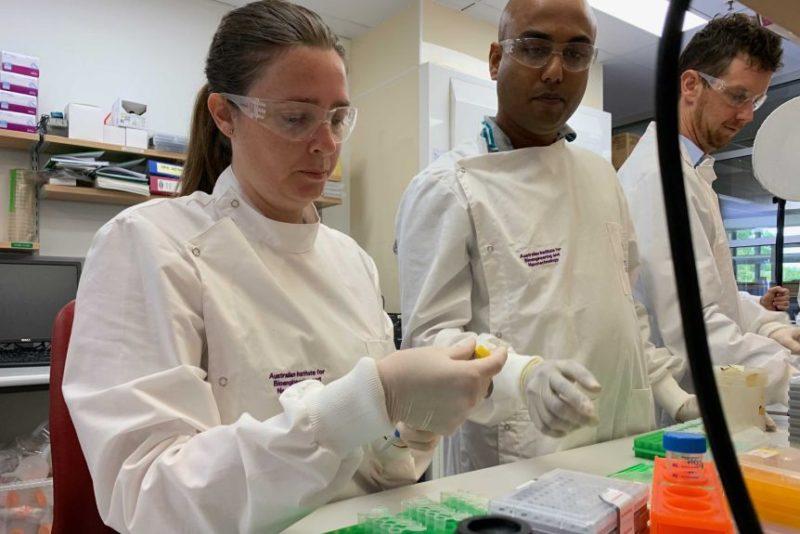queensland csl virus vaccine