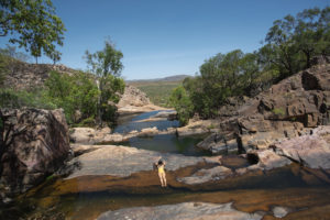 best of northern territory