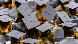 senators coalition university fees