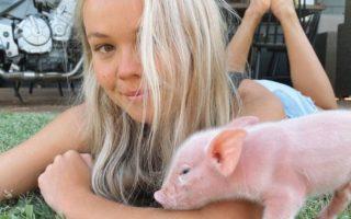 lauren mcgeachin vegan piglet