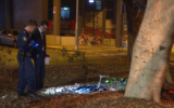 pyrmont stabbing teenagers