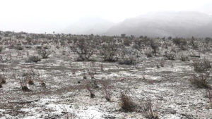 snow wilpena pound rain