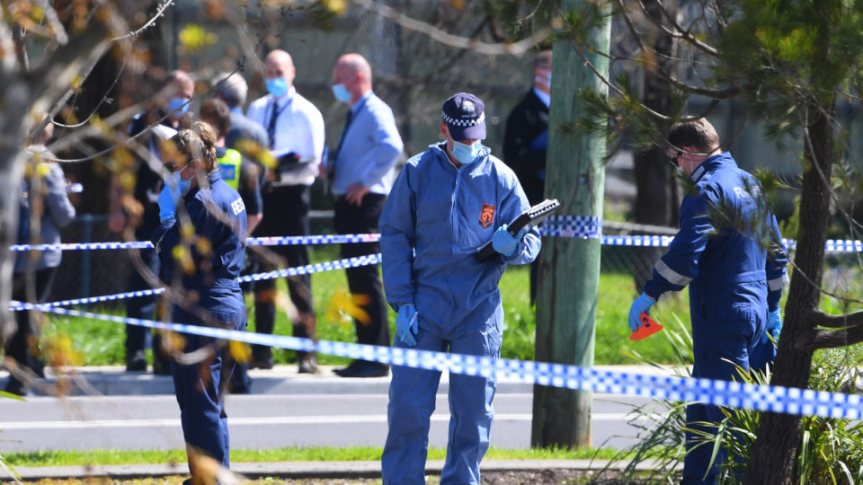 police shooting lilydale